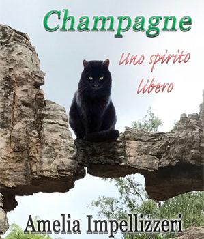 Libri sui gatti, libri di gatti e spiriti liberi